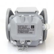 Реле защиты трансформатора РЗТ-50 - вид спереди