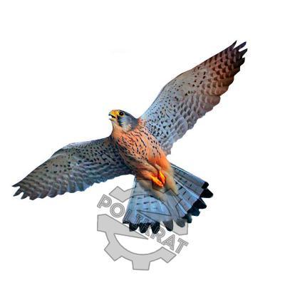 Визуальный отпугиватель птиц Хищник-3 - фото