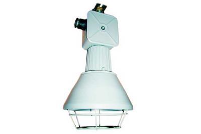 Светильник ССП-01В - фото